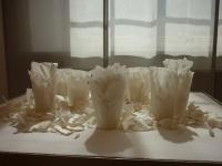 peeled-cups